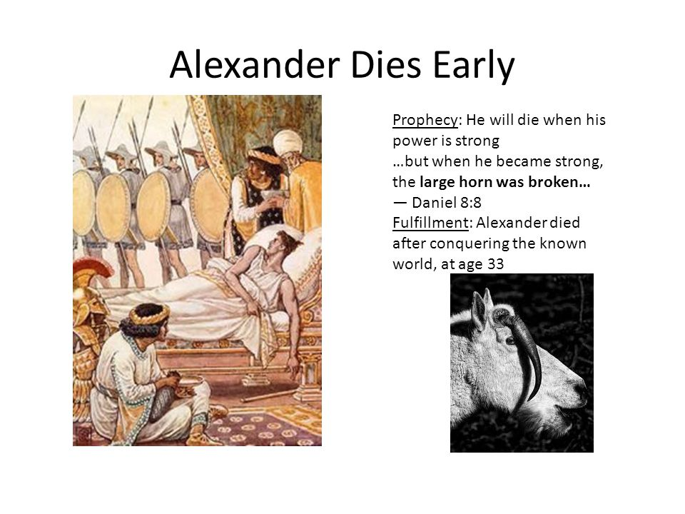 Alexander Dies Early Prophecy: He will die when his power is strong …but when he became strong, the large horn was broken… — Daniel 8:8 Fulfillment: Alexander died after conquering the known world, at age 33