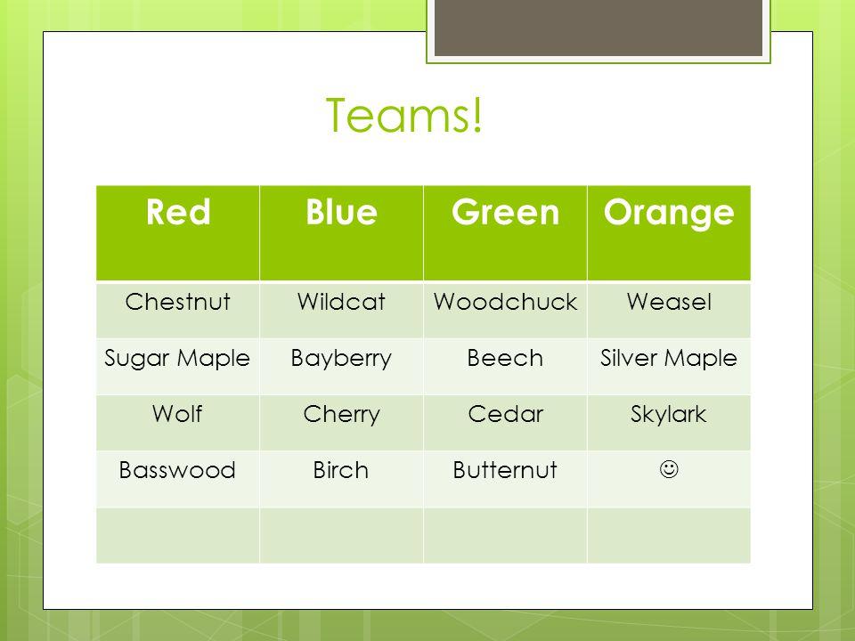 Teams.