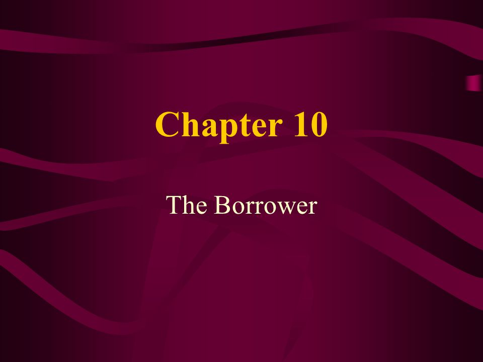 Chapter 10 The Borrower