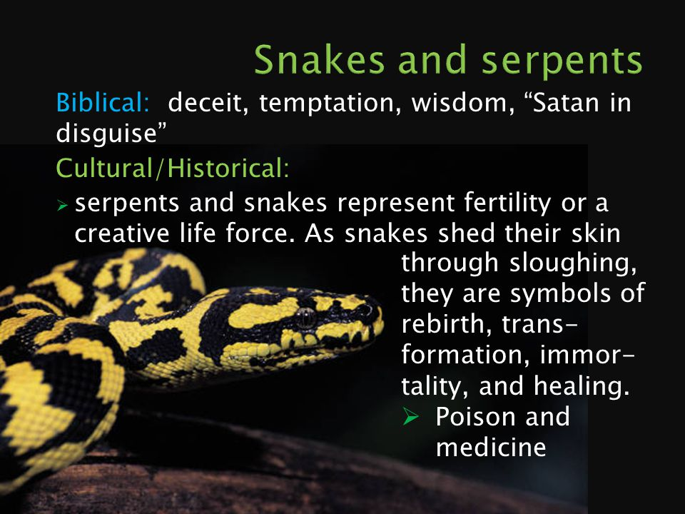 Biblical: deceit, temptation, wisdom, Satan in disguise Cultural/Historical:  serpents and snakes represent fertility or a creative life force.