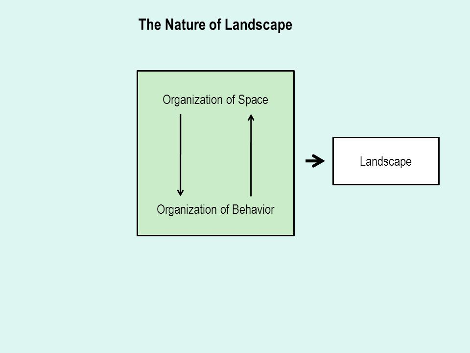 Organization of Space Organization of Behavior Landscape The Nature of Landscape
