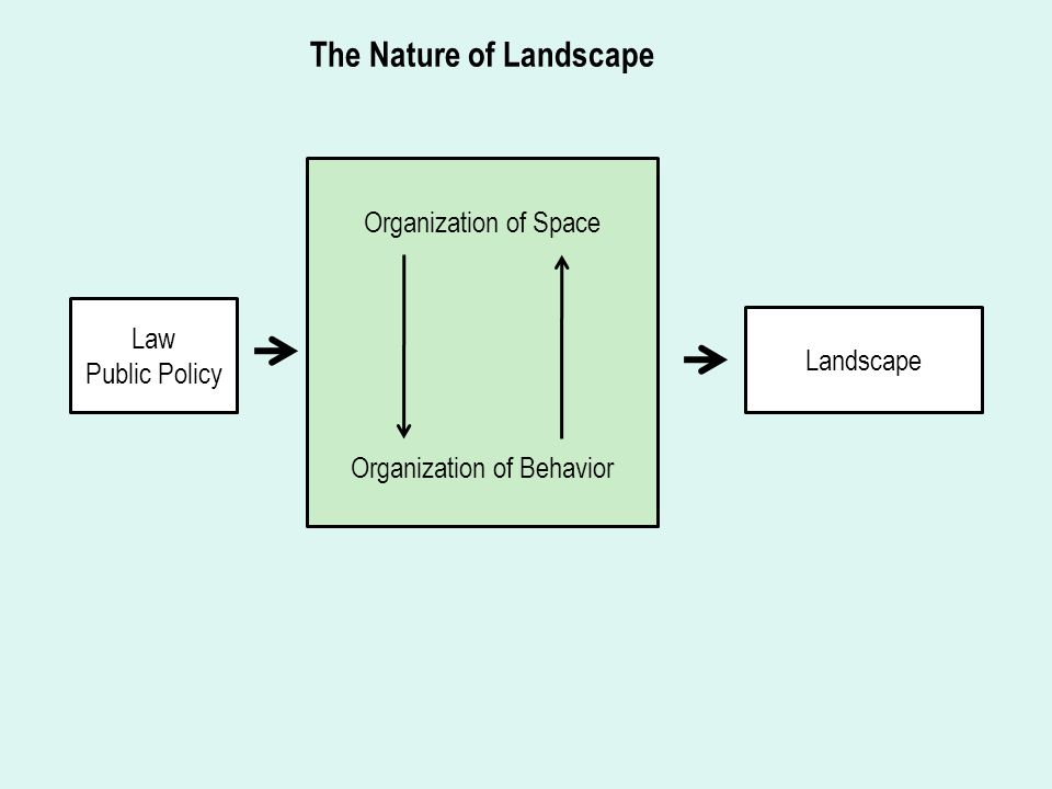 Organization of Space Organization of Behavior Law Public Policy Landscape The Nature of Landscape