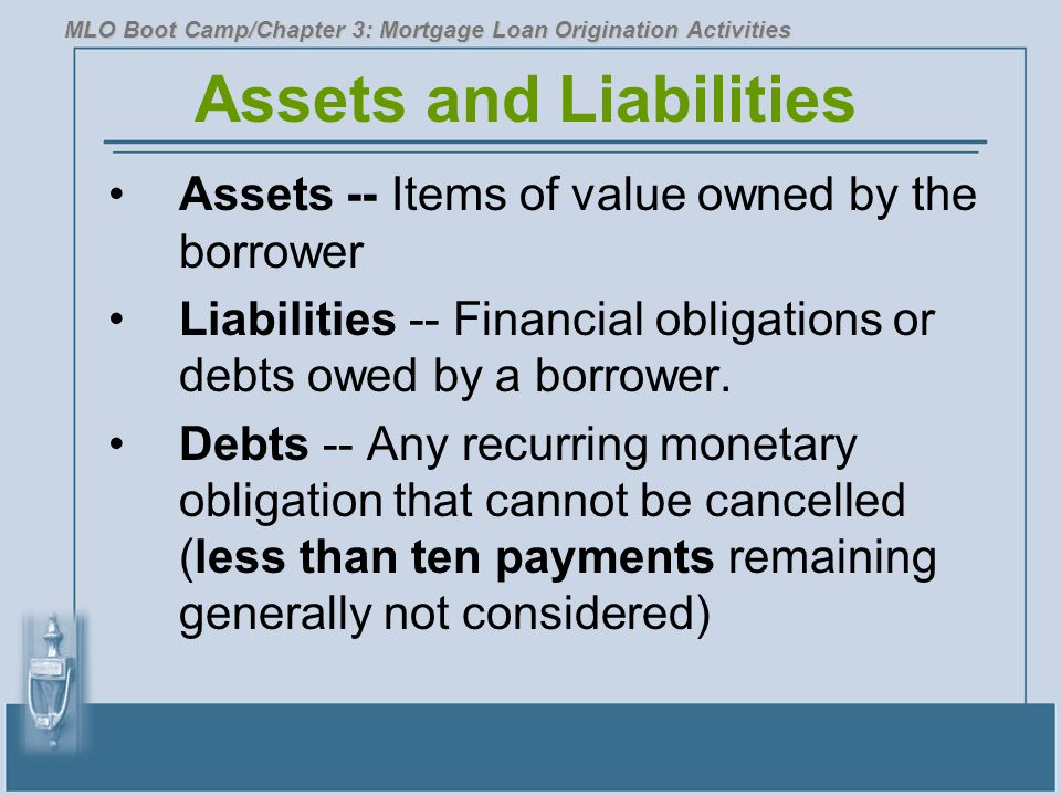 Assets and Liabilities Assets -- Items of value owned by the borrower Liabilities -- Financial obligations or debts owed by a borrower. Debts -- Any r