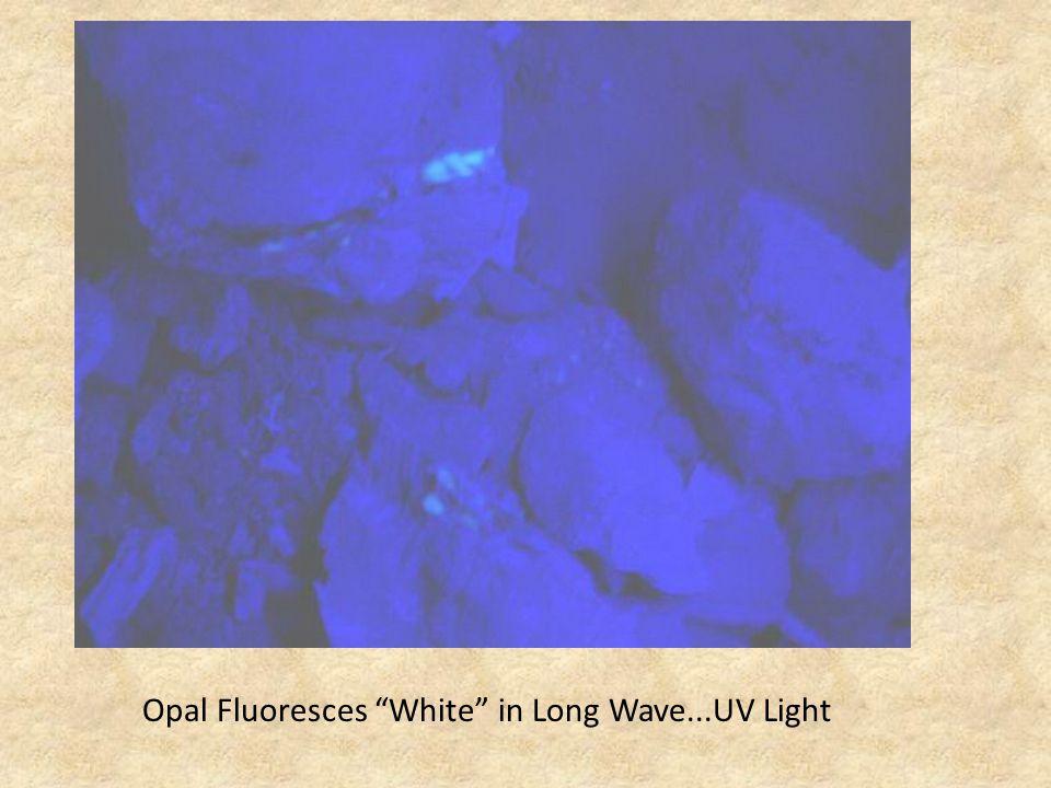 Opal Fluoresces White in Long Wave...UV Light