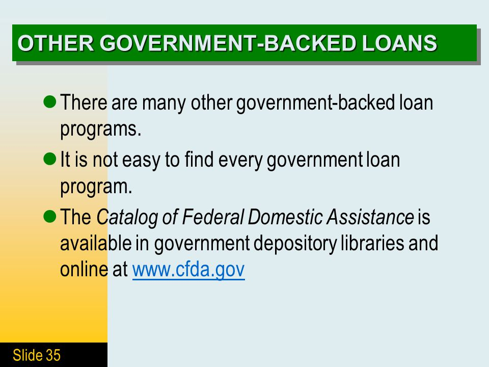 Slide 35 OTHER GOVERNMENT-BACKED LOANS There are many other government-backed loan programs. It is not easy to find every government loan program. The
