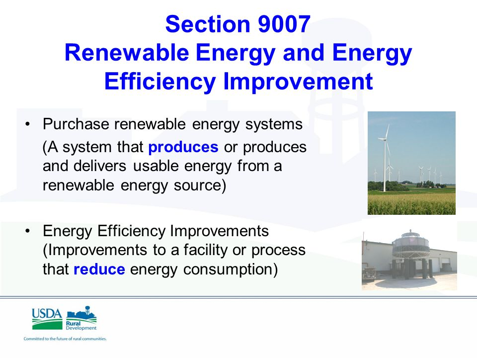 Section 9007 Renewable Energy and Energy Efficiency Improvement Purchase renewable energy systems (A system that produces or produces and delivers usable energy from a renewable energy source) Energy Efficiency Improvements (Improvements to a facility or process that reduce energy consumption)