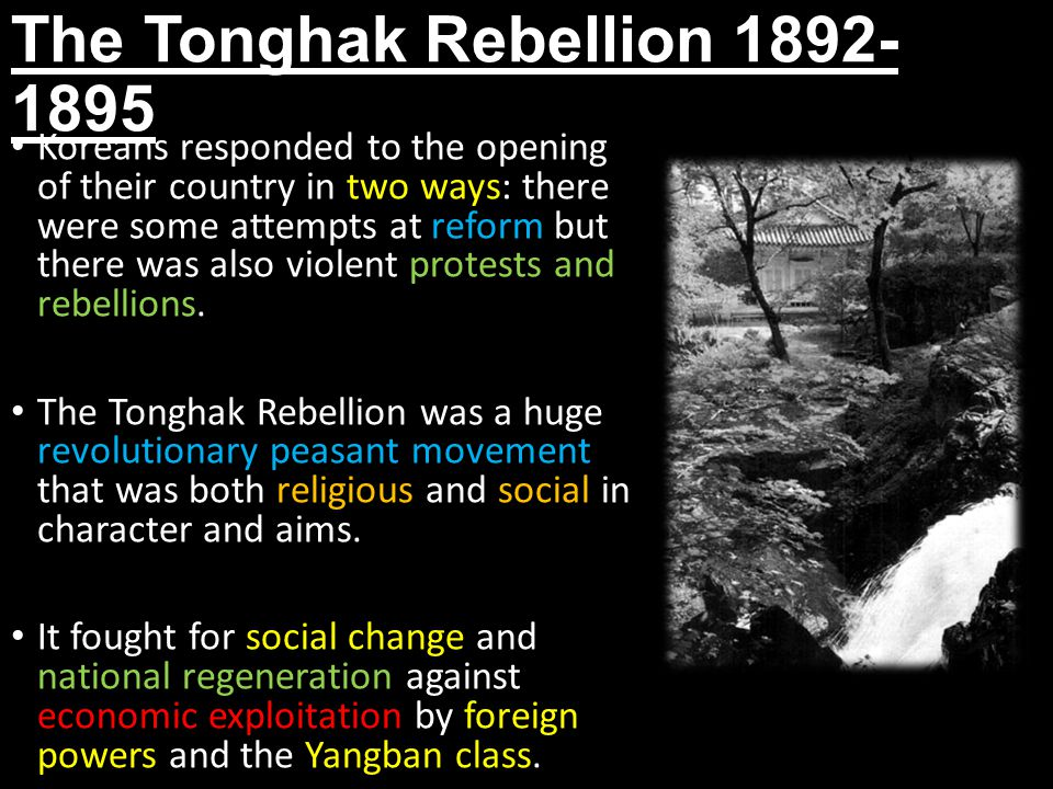 The Tonghak Rebellion 1892- 1895 Koreans responded to the opening of their country in two ways: there were some attempts at reform but there was also violent protests and rebellions.
