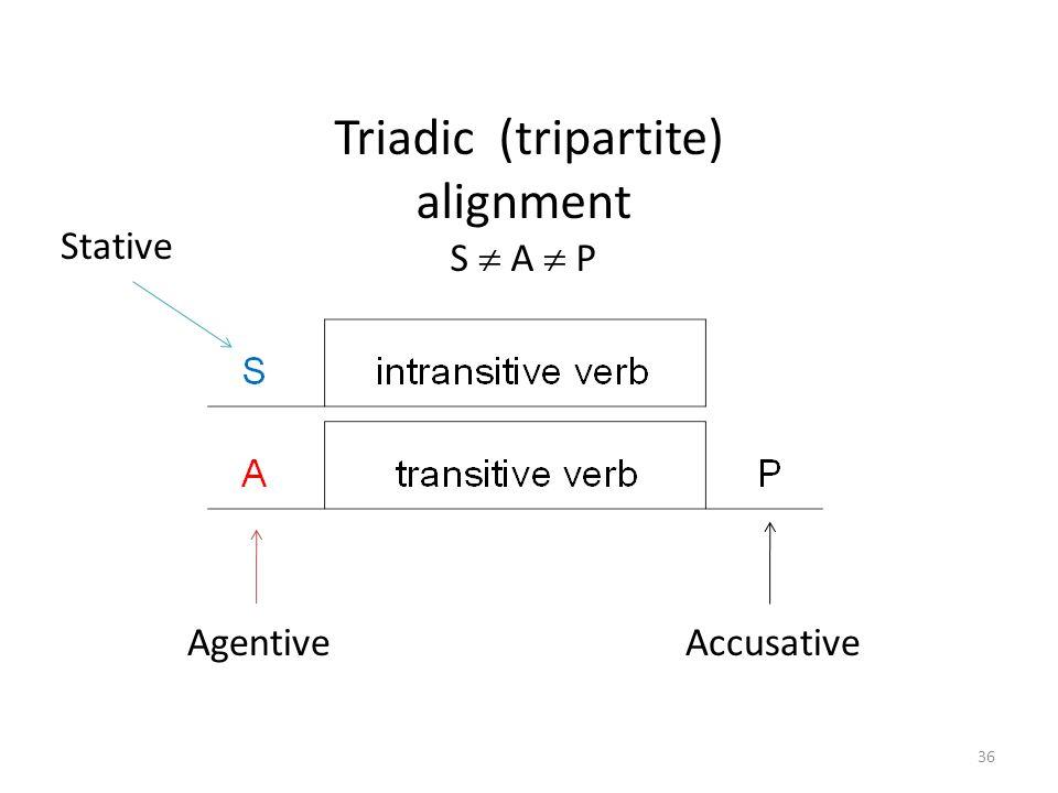 Triadic (tripartite) alignment S  A  P Agentive Accusative Stative 36