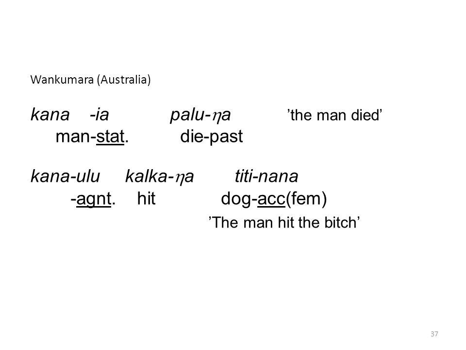 Wankumara (Australia) kana -ia palu-  a 'the man died' man-stat.