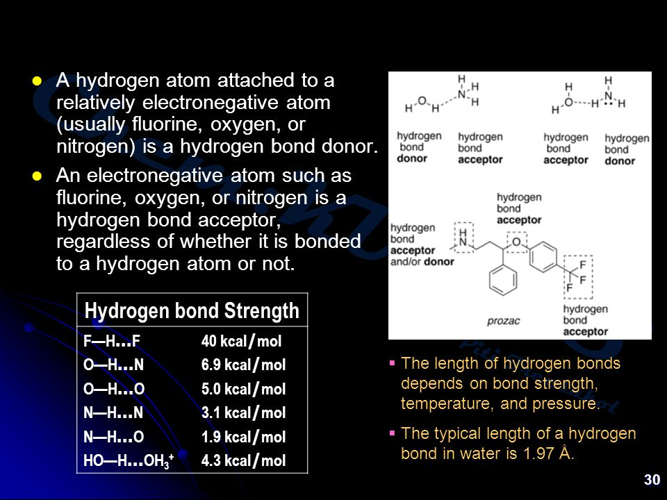 Chem:KU-KPS Piti Treesukol 30 A hydrogen atom attached to a relatively electronegative atom (usually fluorine, oxygen, or nitrogen) is a hydrogen bond donor.