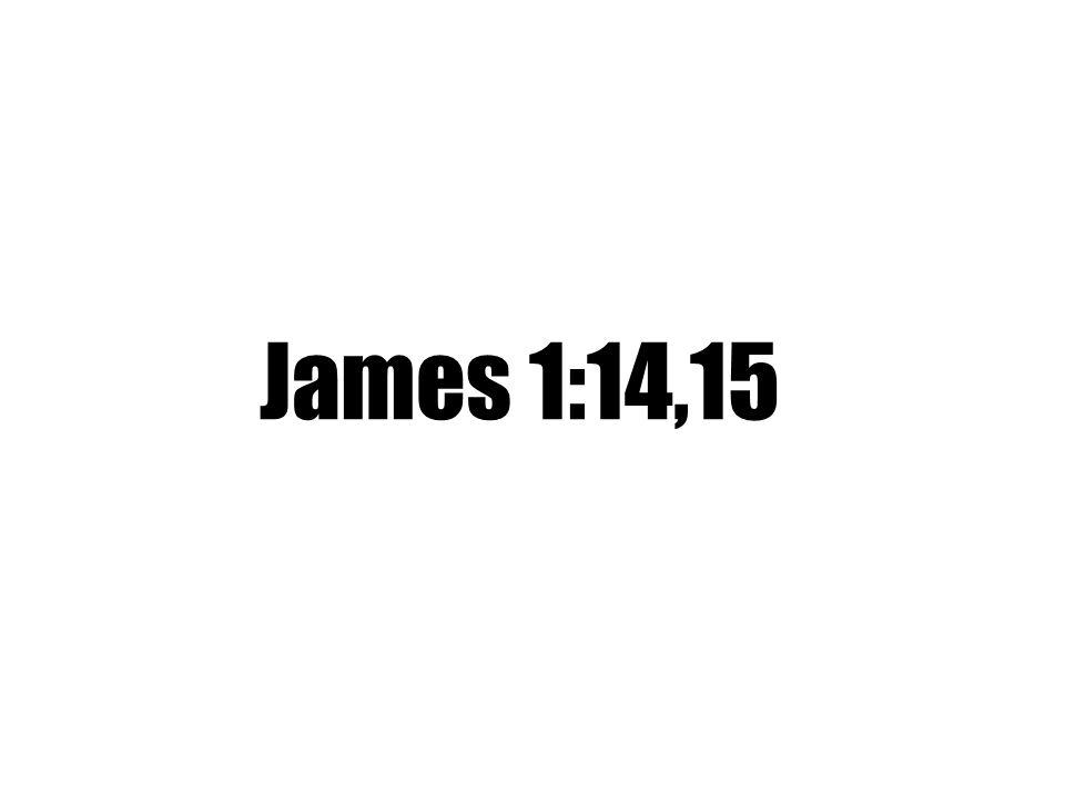 James 1:14,15