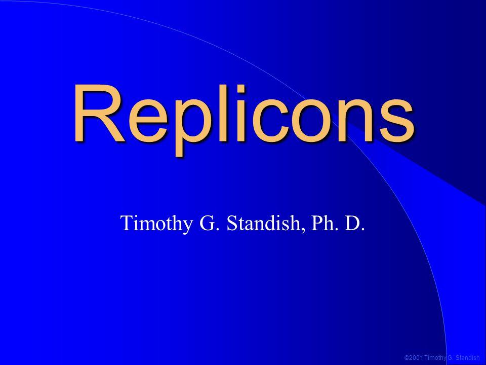 ©2001 Timothy G. Standish Various Replication Strategies D-loop Rolling circle