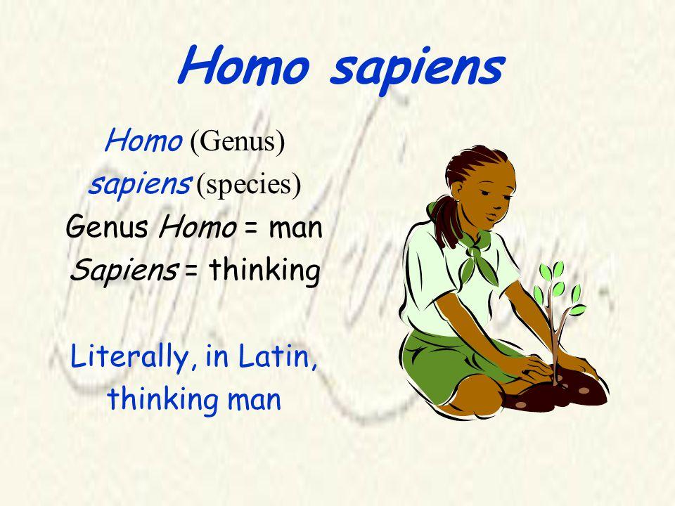 Homo sapiens Homo (Genus) sapiens (species) Genus Homo = man Sapiens = thinking Literally, in Latin, thinking man