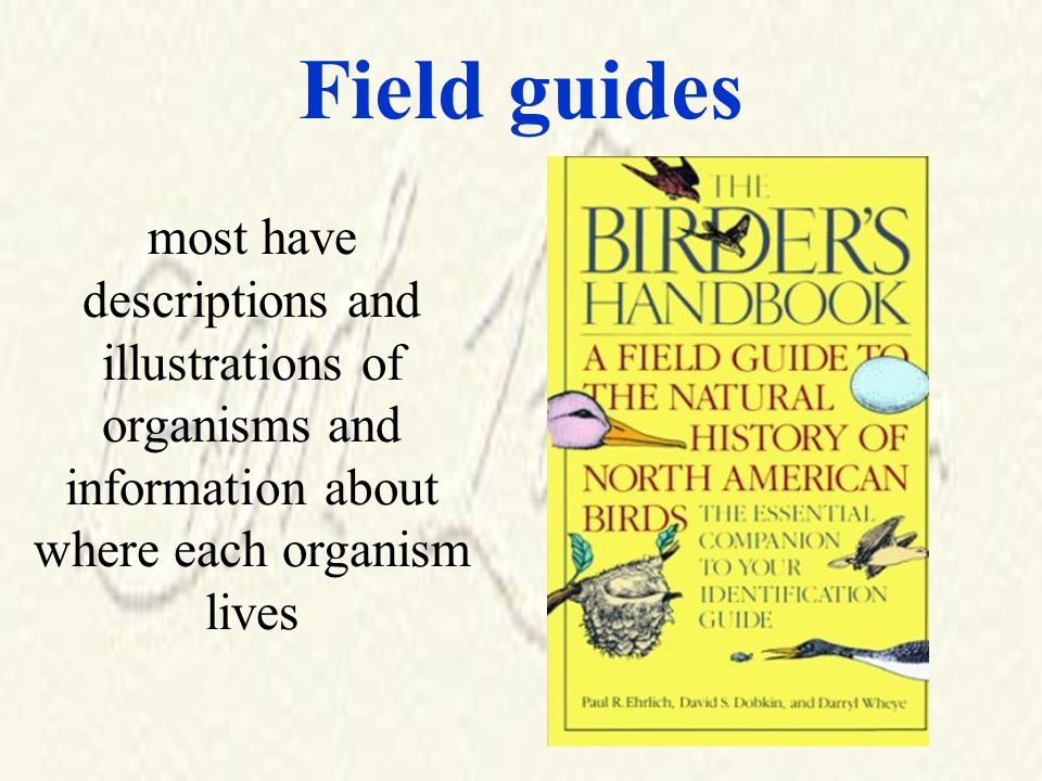 Field guides most have descriptions and illustrations of organisms and information about where each organism lives