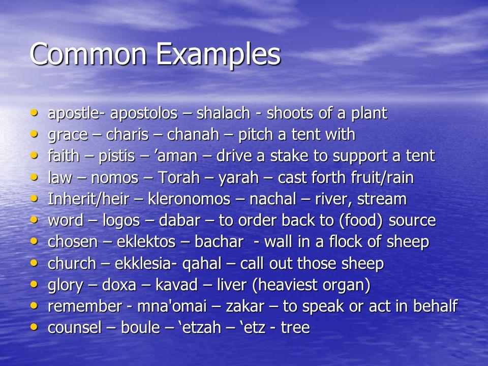 Common Examples apostle- apostolos – shalach - shoots of a plant apostle- apostolos – shalach - shoots of a plant grace – charis – chanah – pitch a te
