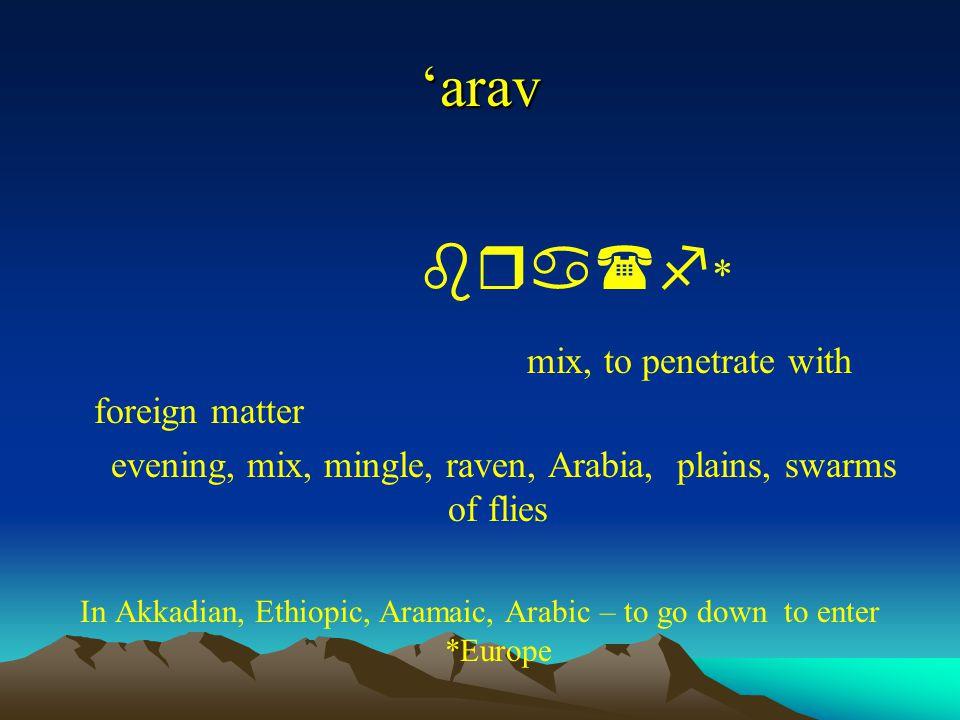 'arav bra(f * mix, to penetrate with foreign matter evening, mix, mingle, raven, Arabia, plains, swarms of flies In Akkadian, Ethiopic, Aramaic, Arabi