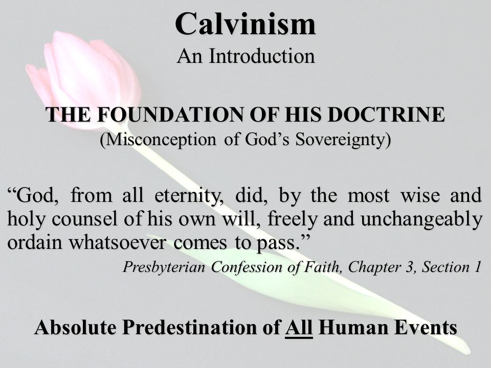 Calvinism An Introduction THE FOUNDATION OF HIS DOCTRINE (Misconception of God's Sovereignty) God, from all eternity, did, by the most wise and holy counsel of his own will, freely and unchangeably ordain whatsoever comes to pass. Presbyterian Confession of Faith, Chapter 3, Section 1 Absolute Predestination of All Human Events
