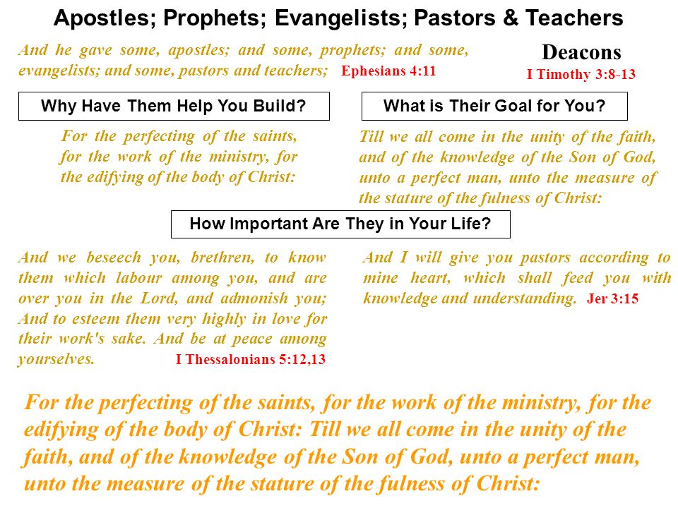 Apostles; Prophets; Evangelists; Pastors & Teachers And he gave some, apostles; and some, prophets; and some, evangelists; and some, pastors and teach