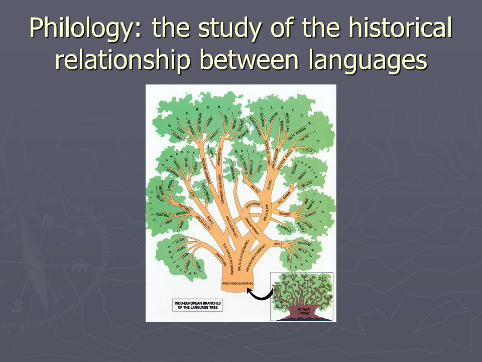 Philology: the study of the historical relationship between languages