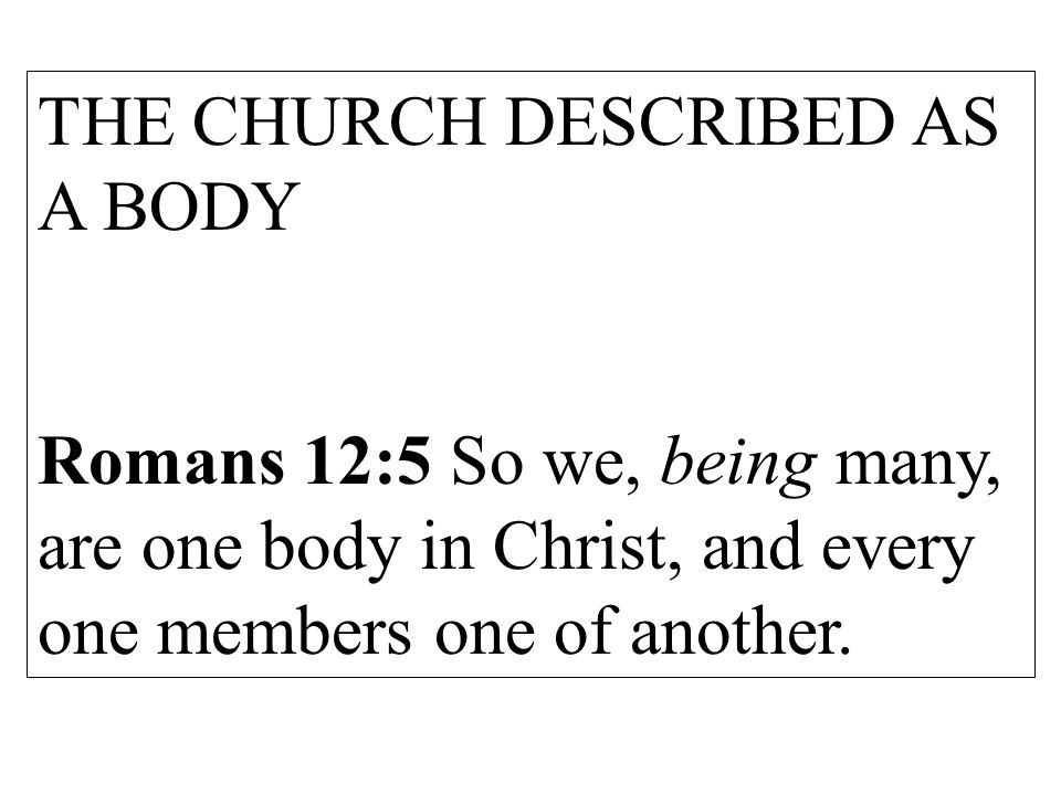 THE CHURCH DESCRIBED AS A BODY Romans 12:5 So we, being many, are one body in Christ, and every one members one of another.