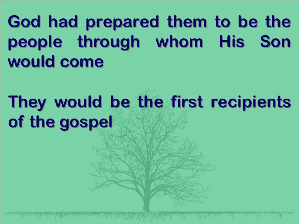 God had prepared them to be the people through whom His Son would come They would be the first recipients of the gospel