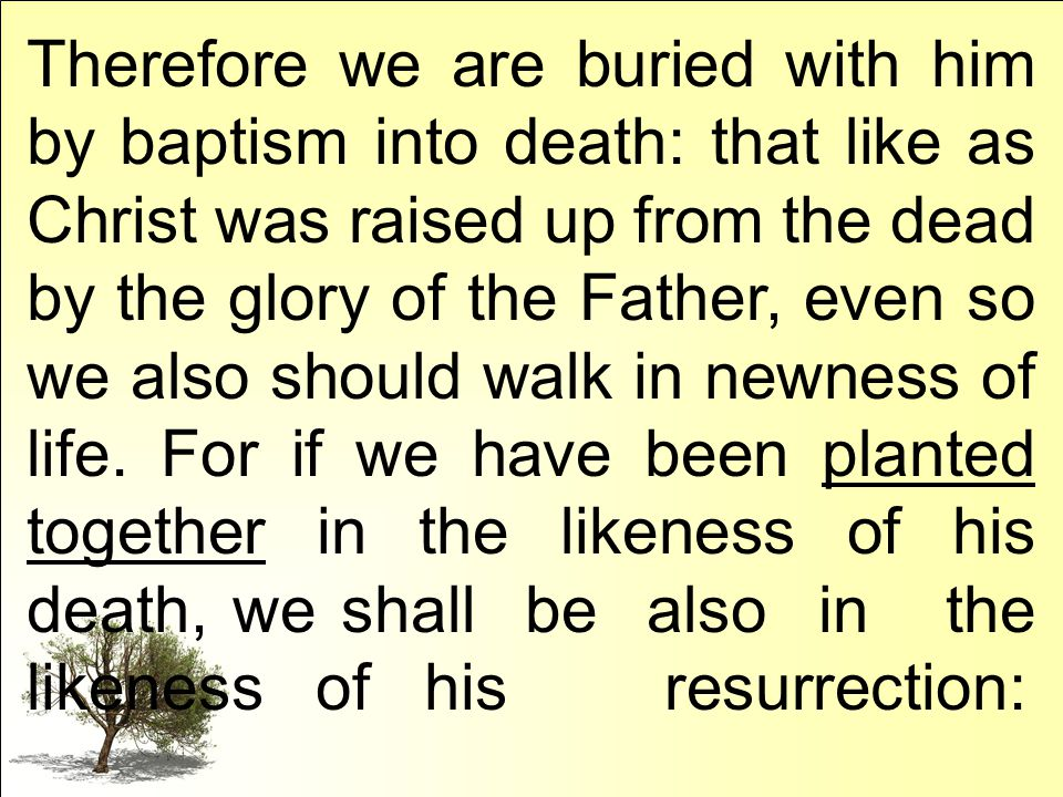 Therefore we are buried with him by baptism into death: that like as Christ was raised up from the dead by the glory of the Father, even so we also should walk in newness of life.