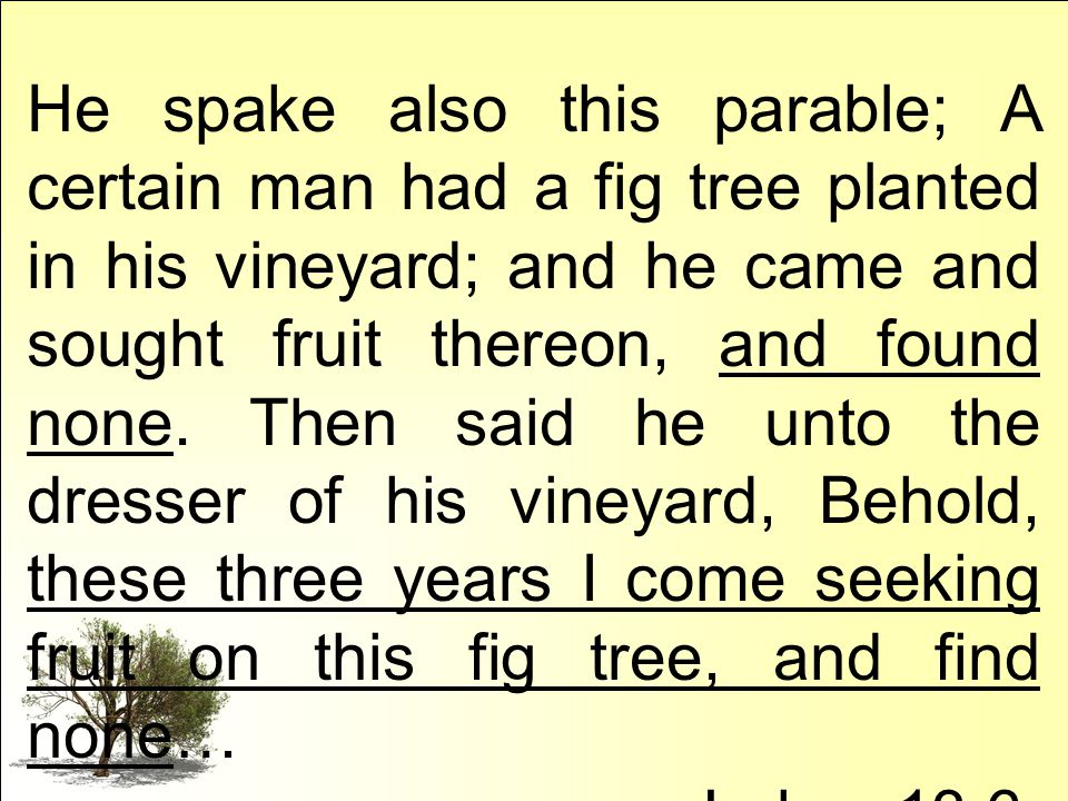 He spake also this parable; A certain man had a fig tree planted in his vineyard; and he came and sought fruit thereon, and found none.