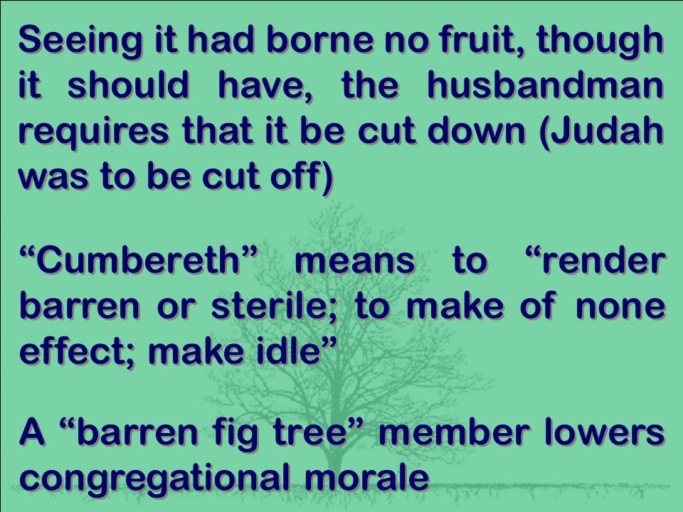 Seeing it had borne no fruit, though it should have, the husbandman requires that it be cut down (Judah was to be cut off) Cumbereth means to render barren or sterile; to make of none effect; make idle A barren fig tree member lowers congregational morale