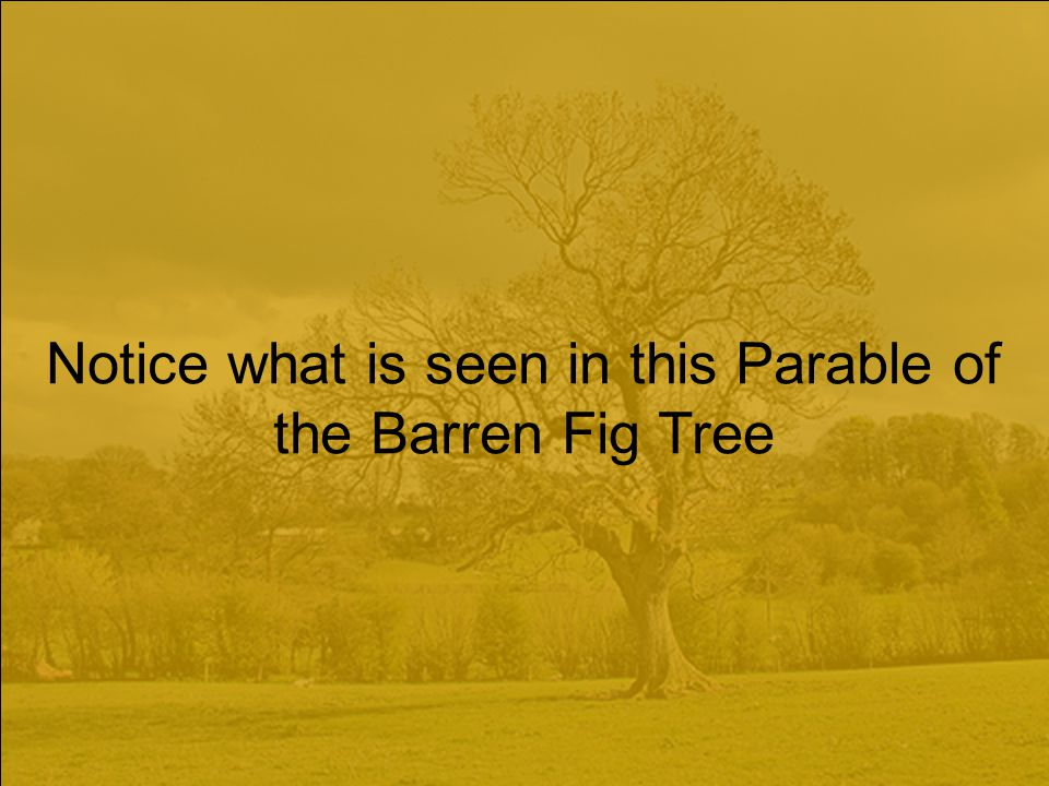 Notice what is seen in this Parable of the Barren Fig Tree