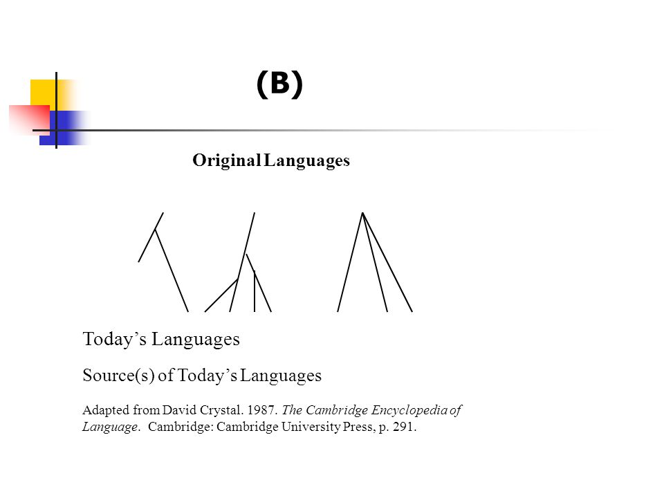 (B) Original Languages Today's Languages Source(s) of Today's Languages Adapted from David Crystal. 1987. The Cambridge Encyclopedia of Language. Camb