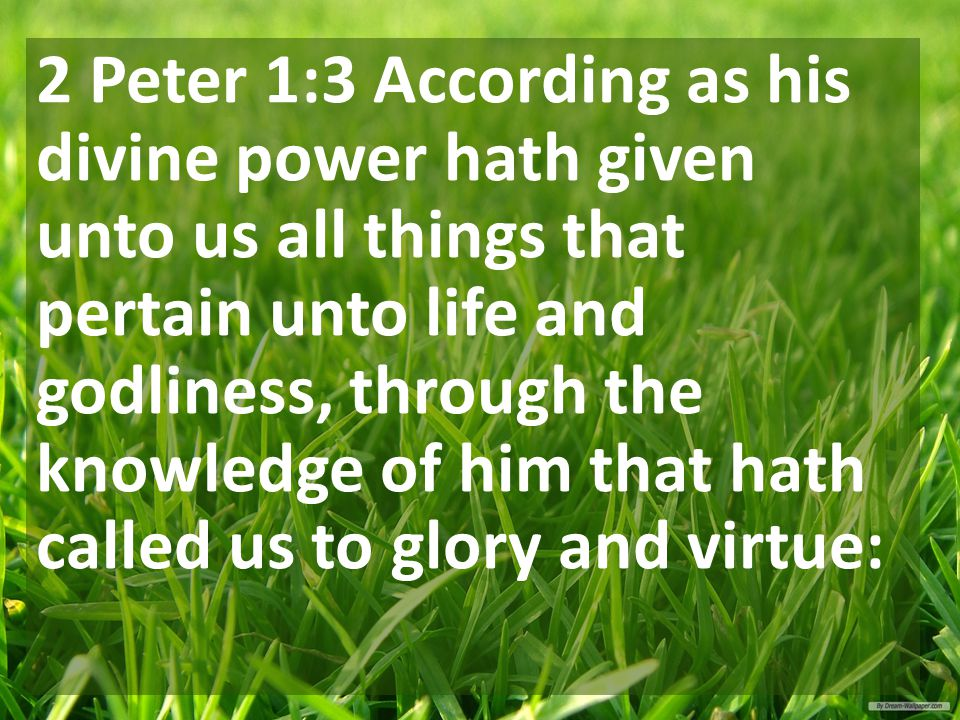 2 Peter 1:3 According as his divine power hath given unto us all things that pertain unto life and godliness, through the knowledge of him that hath called us to glory and virtue: