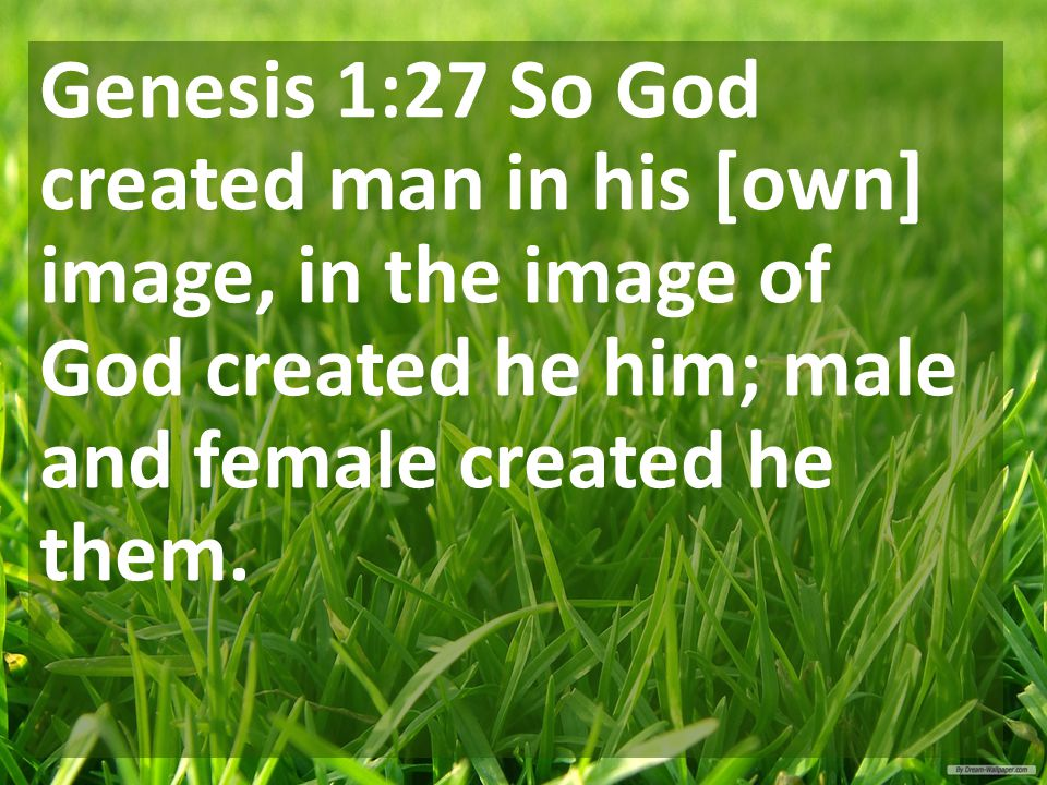 Genesis 1:27 So God created man in his [own] image, in the image of God created he him; male and female created he them.