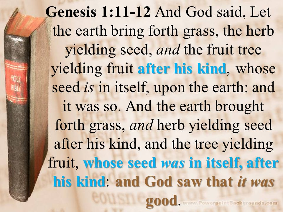 after his kind whose seed was in itself, after his kindand God saw that it was good Genesis 1:11-12 And God said, Let the earth bring forth grass, the herb yielding seed, and the fruit tree yielding fruit after his kind, whose seed is in itself, upon the earth: and it was so.