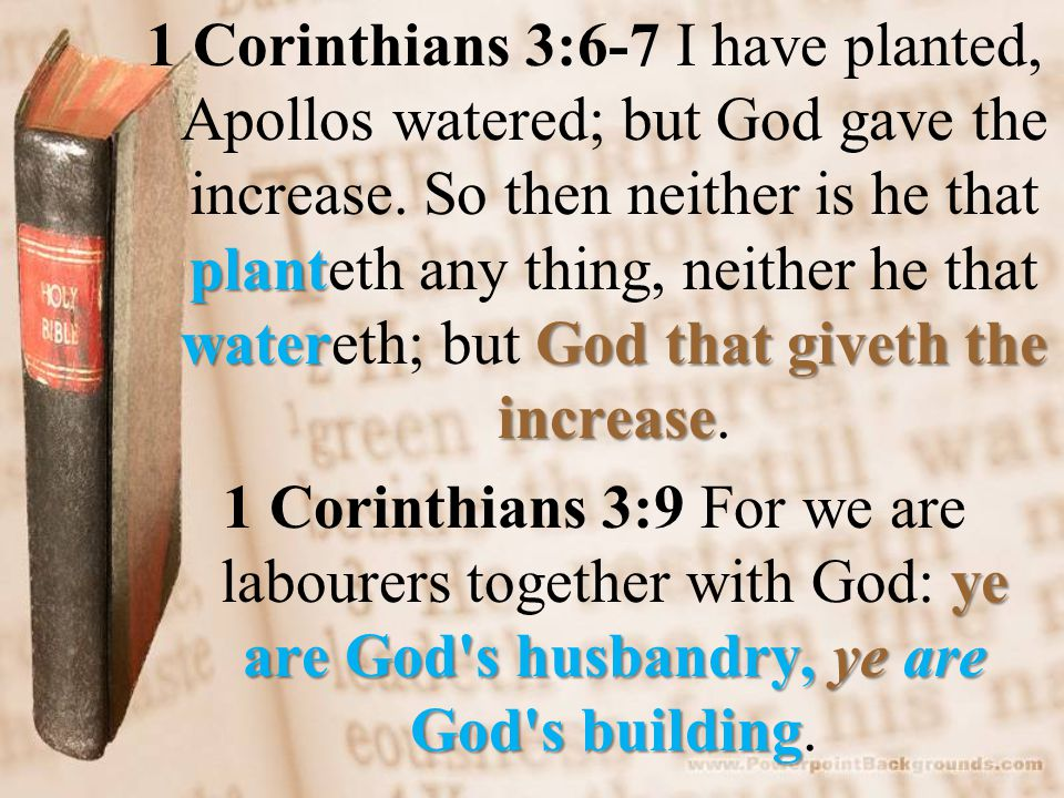 plant waterGod that giveth the increase 1 Corinthians 3:6-7 I have planted, Apollos watered; but God gave the increase.