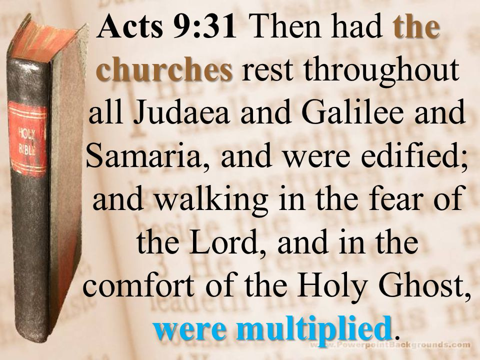 the churches were multiplied Acts 9:31 Then had the churches rest throughout all Judaea and Galilee and Samaria, and were edified; and walking in the fear of the Lord, and in the comfort of the Holy Ghost, were multiplied.