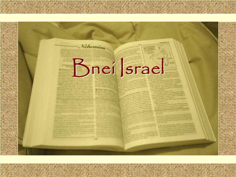 Bnei Israel Comunicación y Gerencia