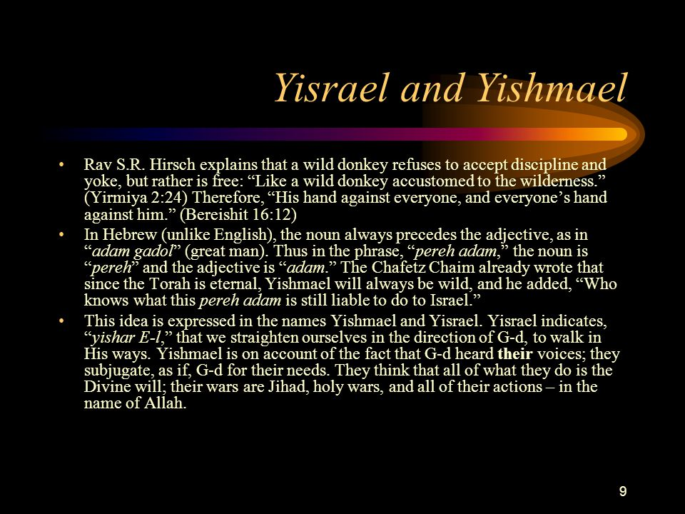 10 Yisrael and Yishmael Not long ago, there was a convention of the Islamic clergy to discuss the question of how to explain the fact that this infection of the Jewish state got stuck in the middle of the large Islamic region.