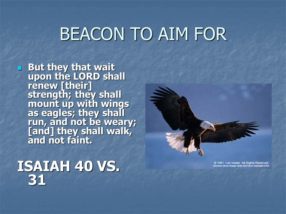 BEACON TO AIM FOR But they that wait upon the LORD shall renew [their] strength; they shall mount up with wings as eagles; they shall run, and not be weary; [and] they shall walk, and not faint.