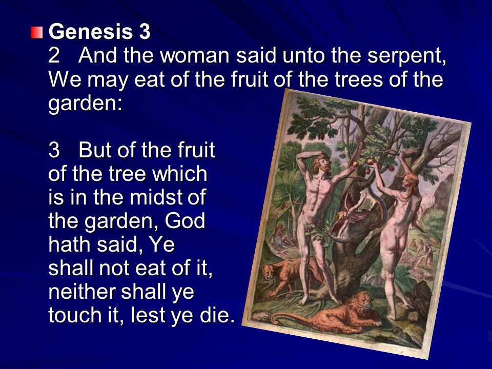 Genesis 3 2 And the woman said unto the serpent, We may eat of the fruit of the trees of the garden: 3 But of the fruit of the tree which is in the midst of the garden, God hath said, Ye shall not eat of it, neither shall ye touch it, lest ye die.