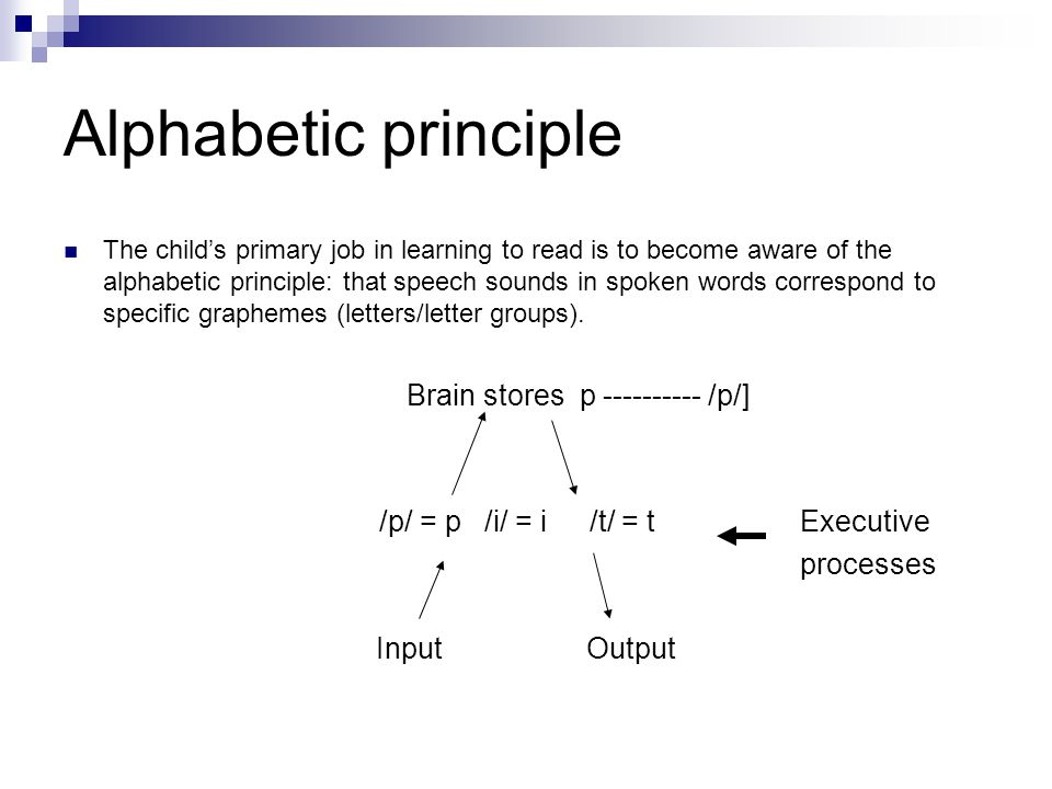 Alphabetic principle The child's primary job in learning to read is to become aware of the alphabetic principle: that speech sounds in spoken words co