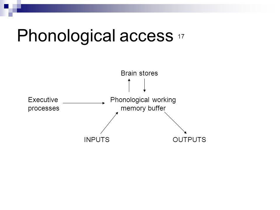 Phonological access 17 Brain stores Phonological working memory buffer Executive processes INPUTSOUTPUTS