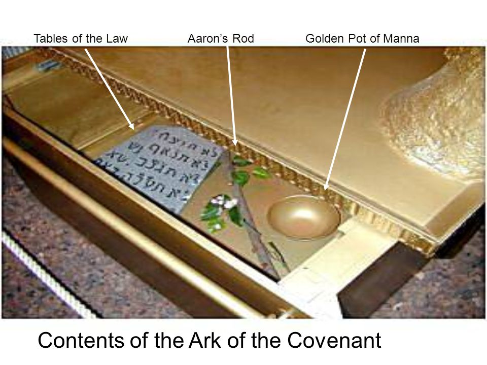 Tables of the LawAaron's RodGolden Pot of Manna Contents of the Ark of the Covenant