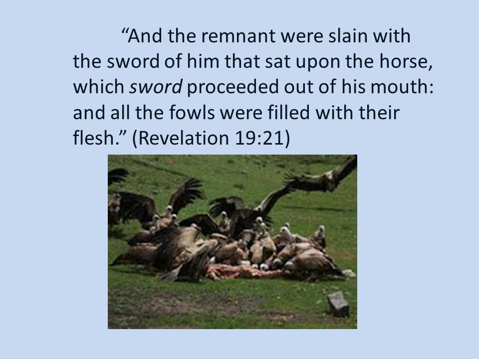 And the remnant were slain with the sword of him that sat upon the horse, which sword proceeded out of his mouth: and all the fowls were filled with their flesh. (Revelation 19:21)