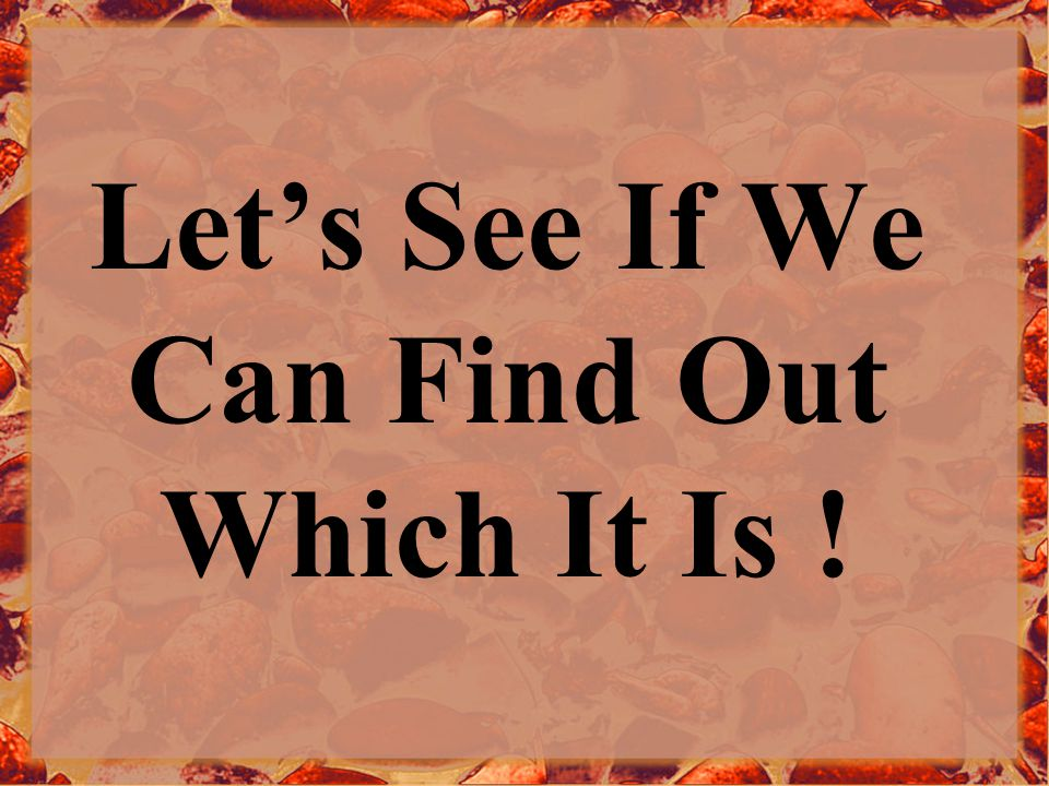 Let's See If We Can Find Out Which It Is !