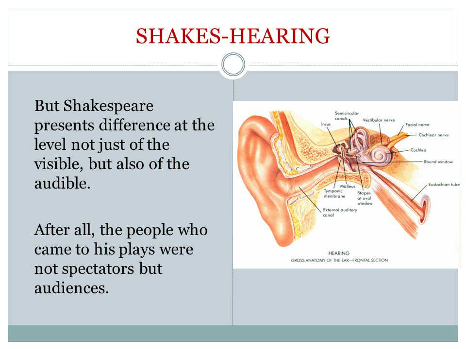 SHAKES-HEARING But Shakespeare presents difference at the level not just of the visible, but also of the audible.