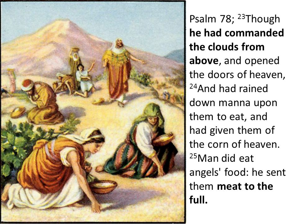 Psalm 78; 23 Though he had commanded the clouds from above, and opened the doors of heaven, 24 And had rained down manna upon them to eat, and had given them of the corn of heaven.