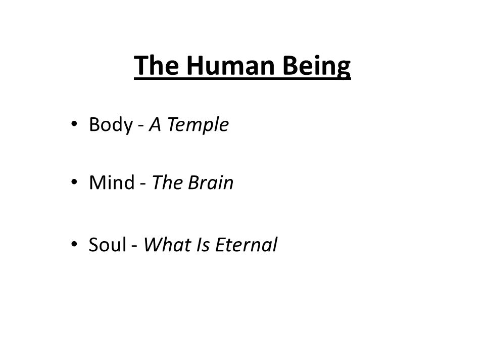 The Human Being Body - A Temple Mind - The Brain Soul - What Is Eternal
