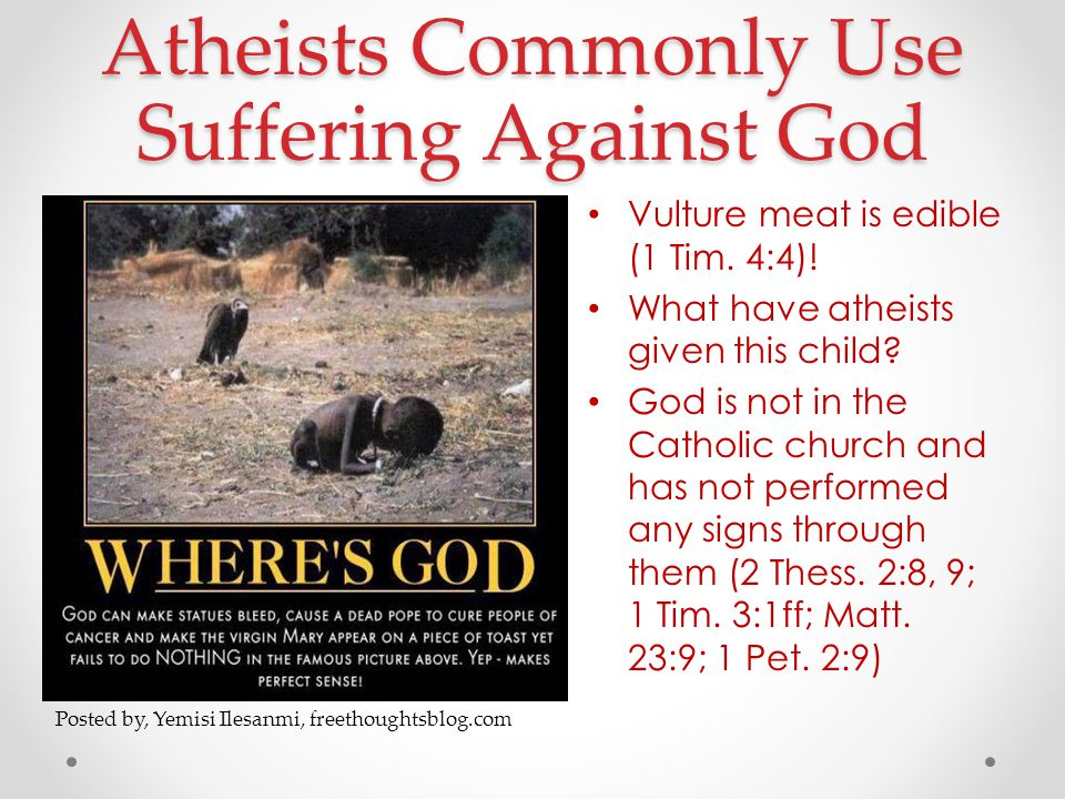 Atheists Commonly Use Suffering Against God Vulture meat is edible (1 Tim.