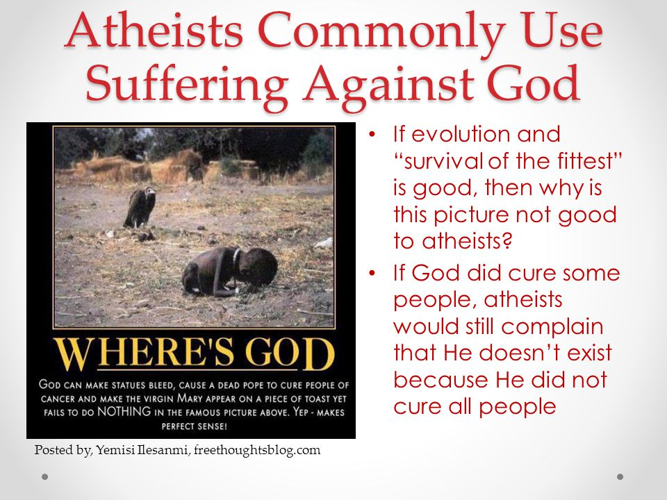 Atheists Commonly Use Suffering Against God If evolution and survival of the fittest is good, then why is this picture not good to atheists.