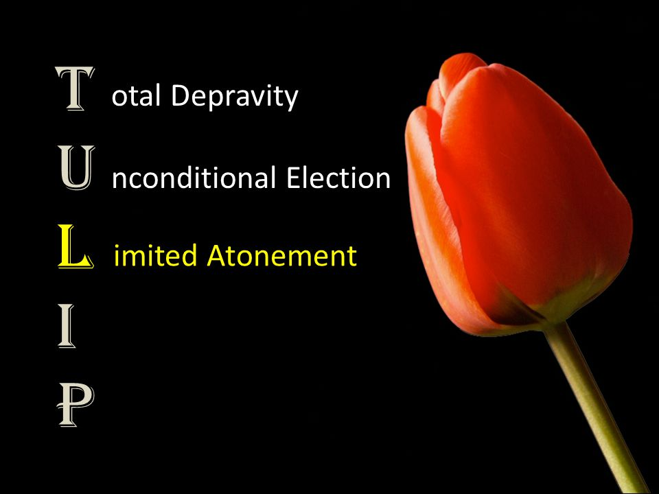 TULIPTULIP otal Depravity nconditional Election imited Atonement